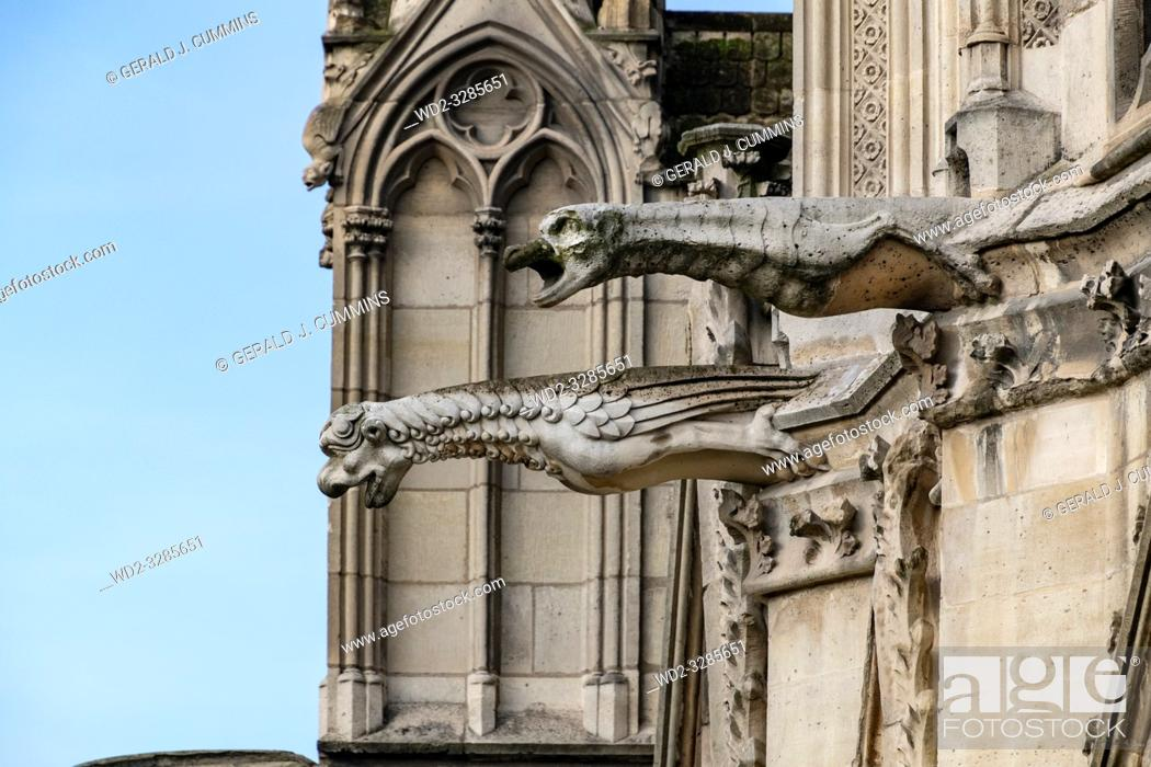Imagen: The famous gargoyles of Notre Dame de Paris, a gothic architectural feature used to divert rain water from the roof and convey it away from the buildingâ.