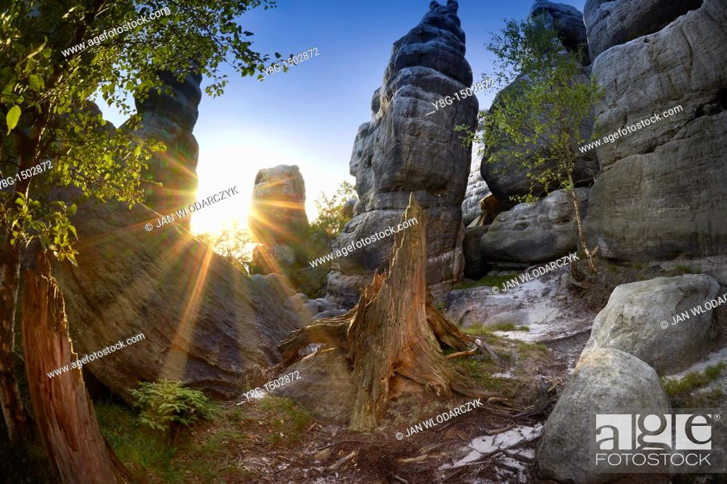 Stock Photo: Szczeliniec Maly - Table National Park, Poland, Europe.