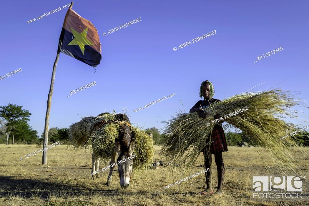 Stock Photo: Angolan girl collecting grass with a donkey posing under an Angolan flag.
