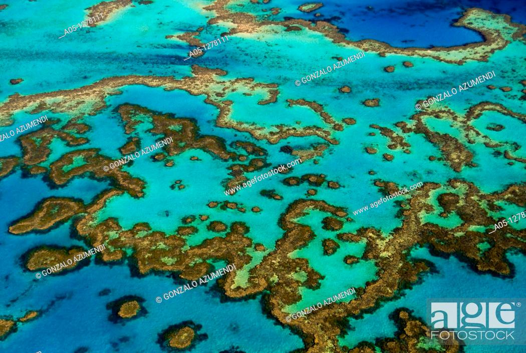 Stock Photo: Great Barrier Reef, Queensland, Australia.