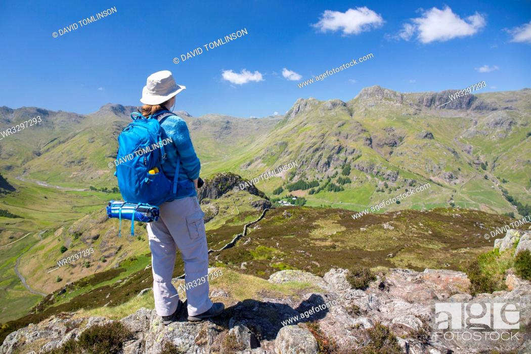 Stock Photo: Hiker on summit of Lingmoor Fell, the Langdale Pikes beyond, Great Langdale, Lake District National Park, UNESCO World Heritage Site, Cumbria, England.