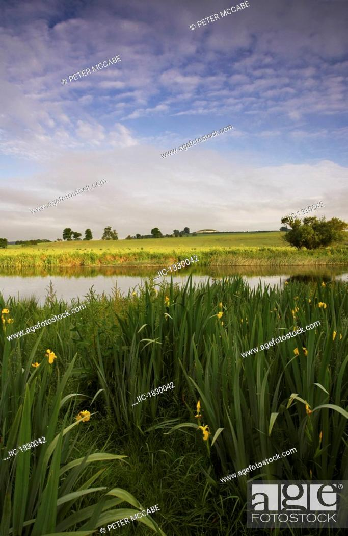 Stock Photo: Newgrange, River Boyne, County Meath, Ireland, Burial Mount In Distance With River Irises In The Foreground.