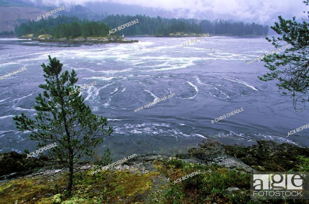 Imagen: Skookumchuck Narrows Provincial Park near Egmont, Sechelt Peninsula, British Columbia, Canada.