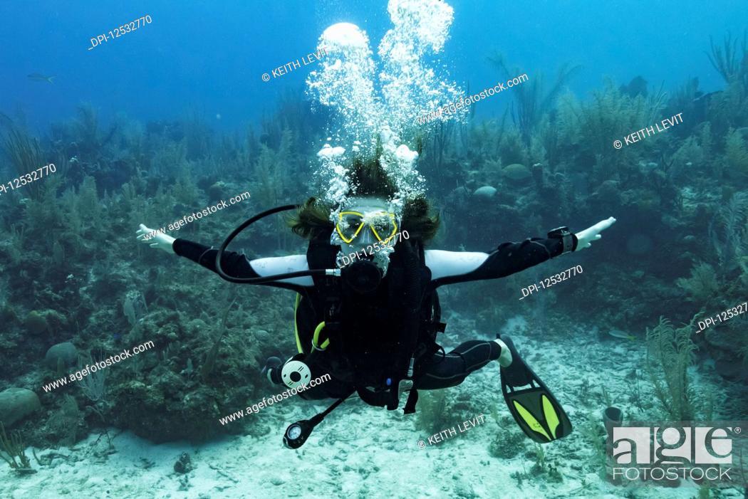 Stock Photo: Scuba diver at Three Amigos Dive Site, Belize Barrier Reef; Belize.