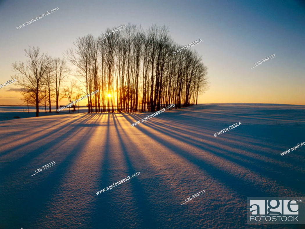 Stock Photo: Winter sunset. Suwalki region, Northern Poland.