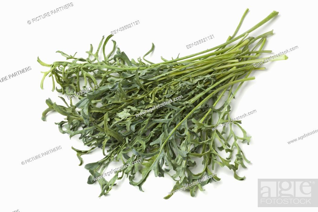 Photo de stock: Heap of fresh homegrown Jagallo Nero Kale on white background.
