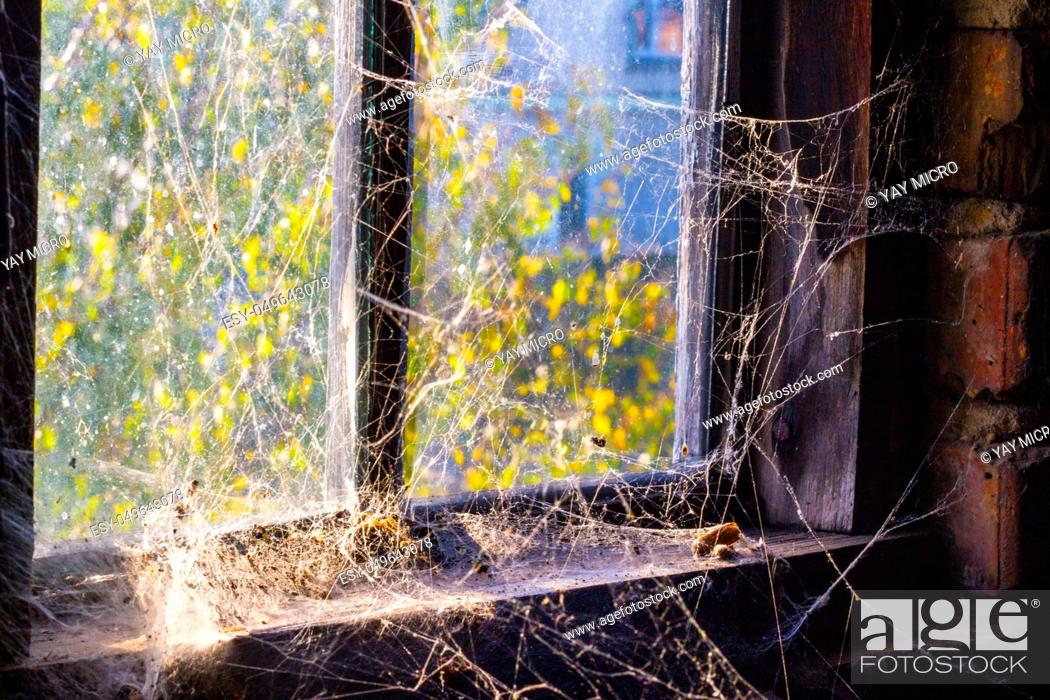 Stock Photo: Old window with cobweb and darkness inside.