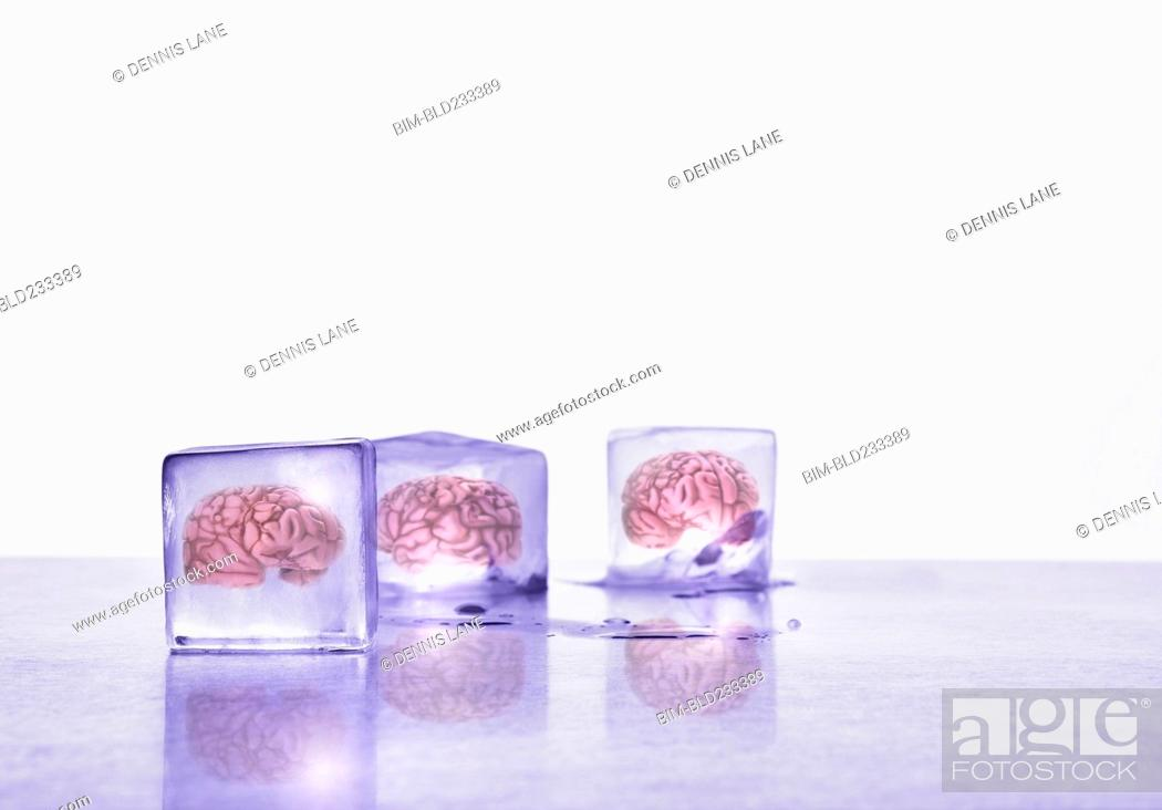 Stock Photo: Brains frozen in ice cubes.