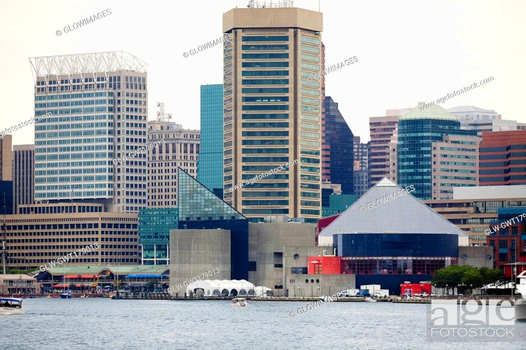 Stock Photo: Buildings at the waterfront, Inner Harbor, Baltimore, Maryland, USA.