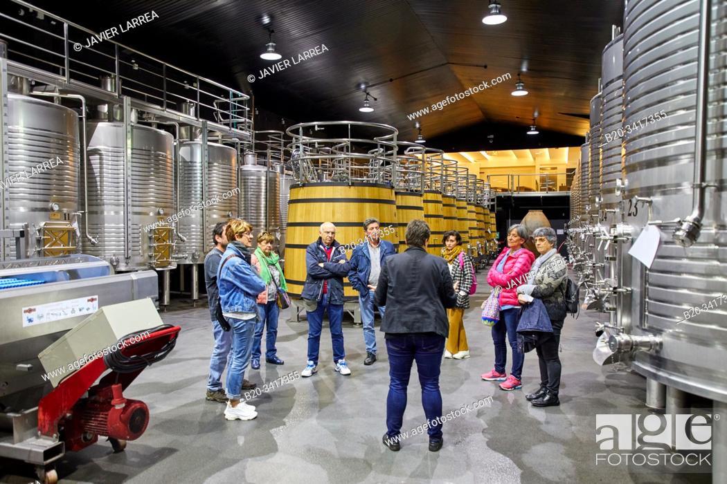 Imagen: Regina Viarum Winery, Ribeira Sacra, Heroic Viticulture, Sil river canyon, Sober, Lugo, Galicia, Spain.
