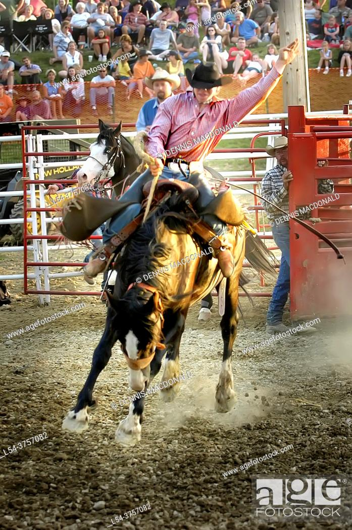 Stock Photo: Cowboys compete in Rodeo action.