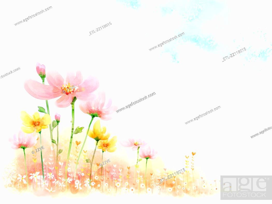 Stock Photo: Peaceful Flower.