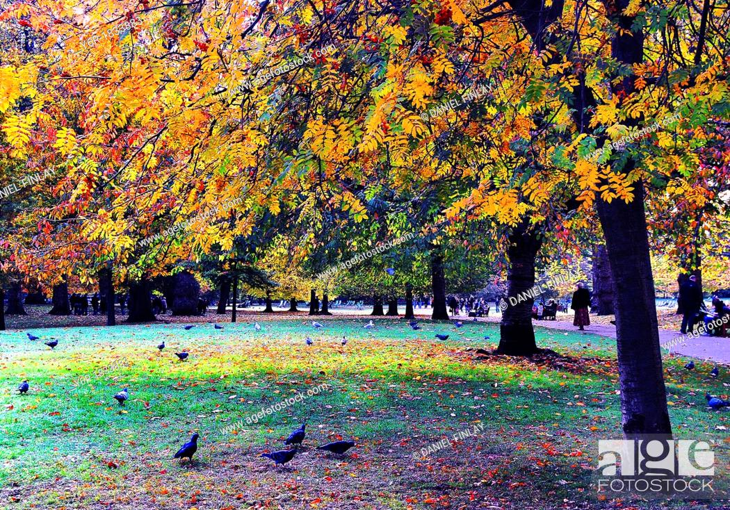 Stock Photo: Visitors enjoy the Autumn/ Fall colours in St  James's Park, London, England on a fine day.