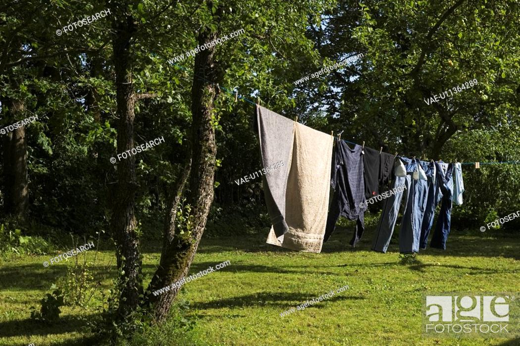 Stock Photo: Clothesline, Clothing, Day, Dry, Drying.