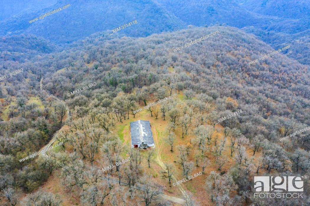 Stock Photo: Deciduous forest and hut. Aerial view. Aranarache area. Navarre, Spain, Europe.
