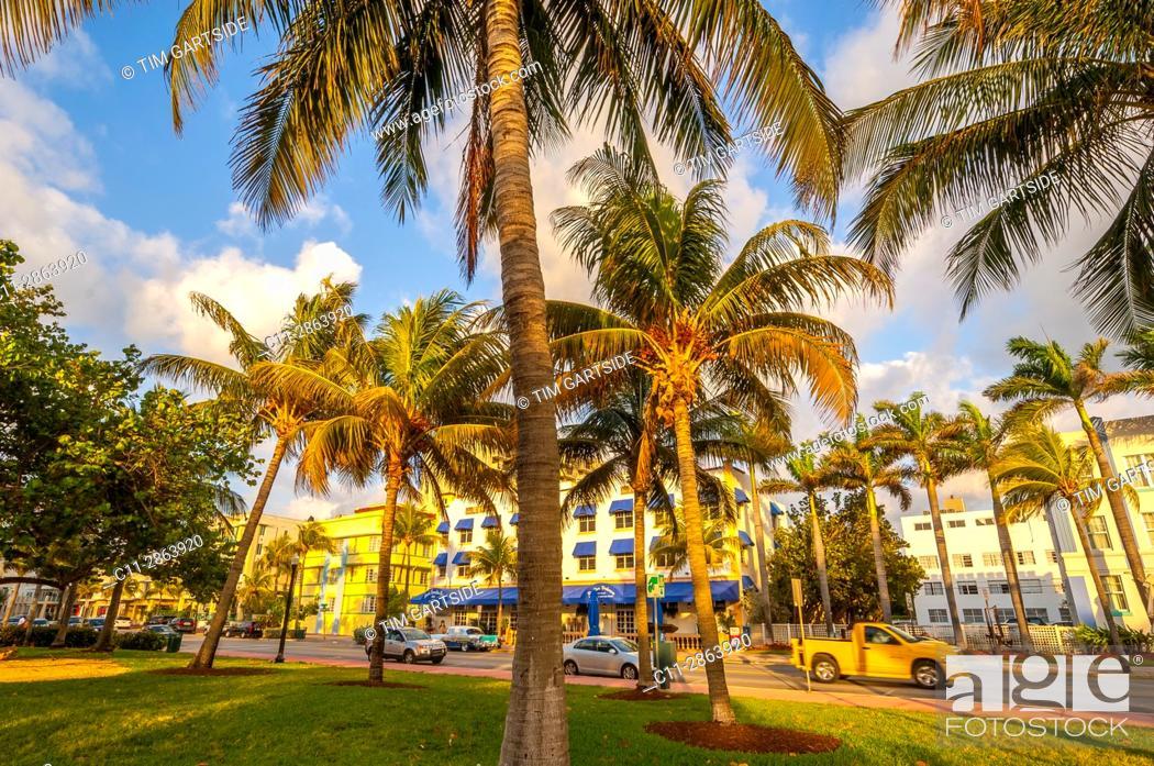 Imagen: south beach; miami; florida; usa; america;.