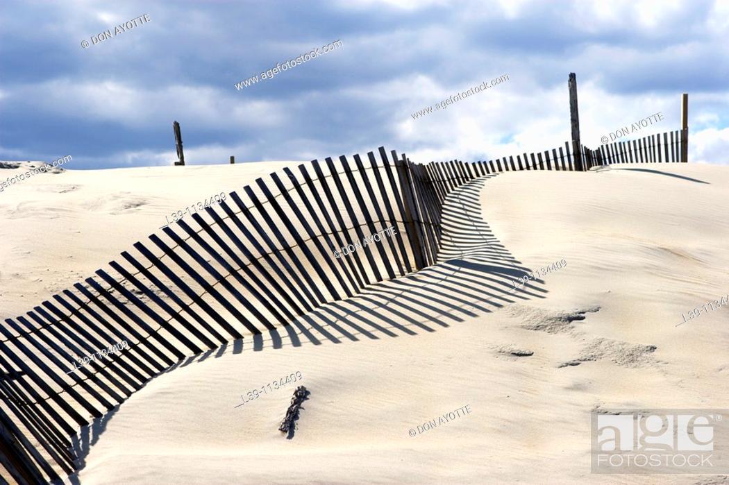 Stock Photo: Sand fences. Outer Banks. North Carolina. USA.