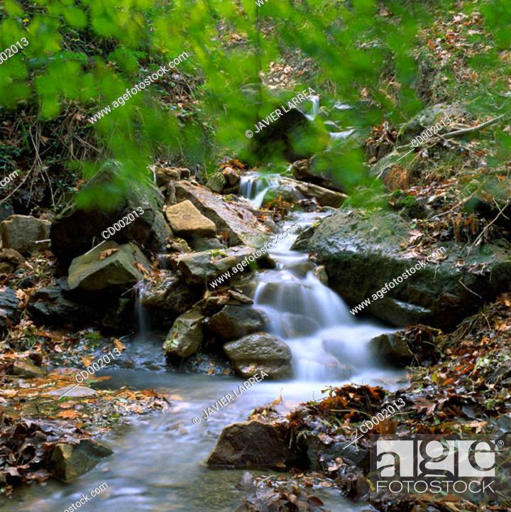 Stock Photo: Alzania River. Guipúzcoa. Spain.