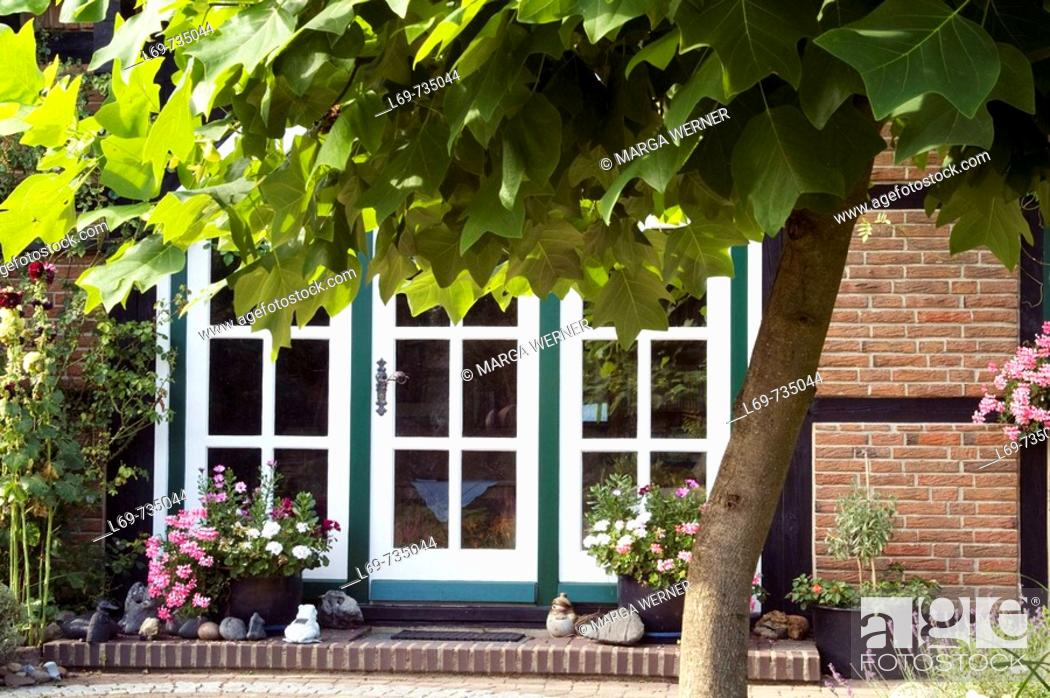 Stock Photo: Half-timbered house with garden. Flower pots. Tulip tree (Liriodendron tulipifera). Lower Saxonie. Germany.