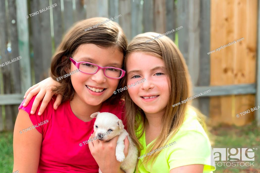 Stock Photo: kid girls playing with puppy pet chihuahua with doggy outdoor.