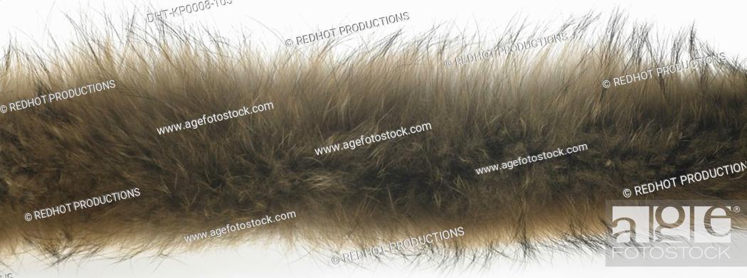 Stock Photo: Brown Fur indoors.