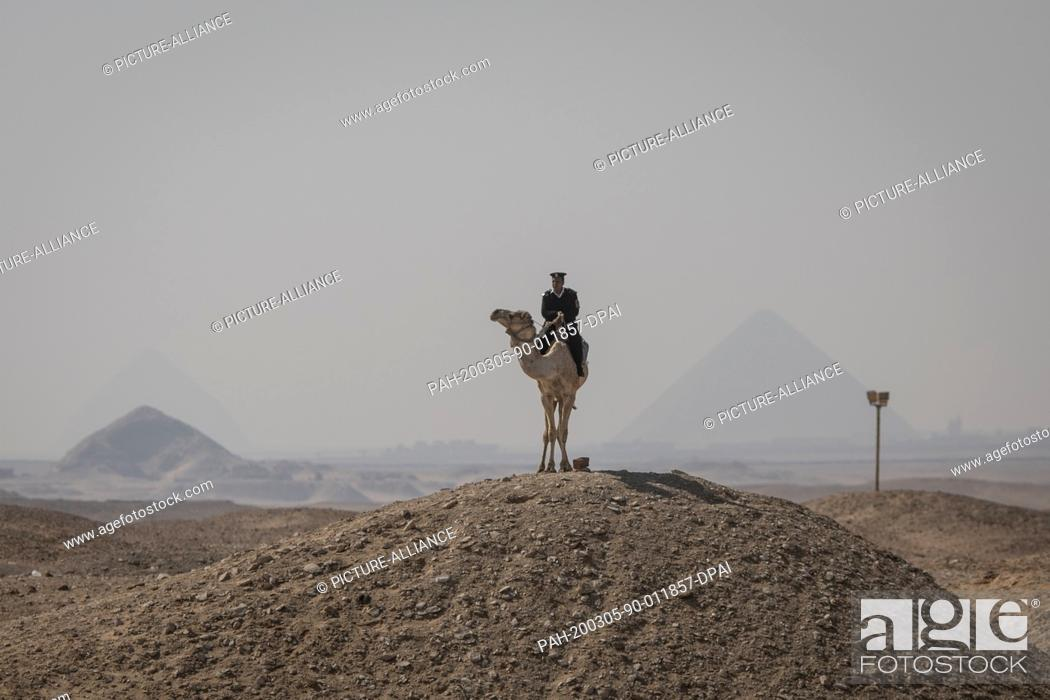 Stock Photo: 05 March 2020, Egypt, Saqqara: An Egyptian police man on a camel stands guard near the Pyramid of Djoser in Saqqara outside Cairo backdropped by further.