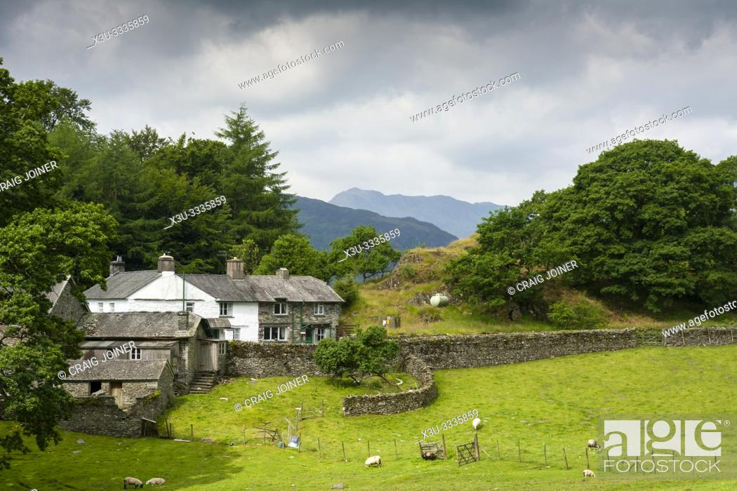 Stock Photo: Farm Cottages at the foot of Loughrigg Tarn in the Lake District National Park, Cumbria, England.