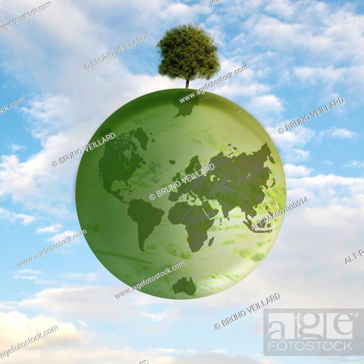 Stock Photo: Solitary tree remaining on earth.