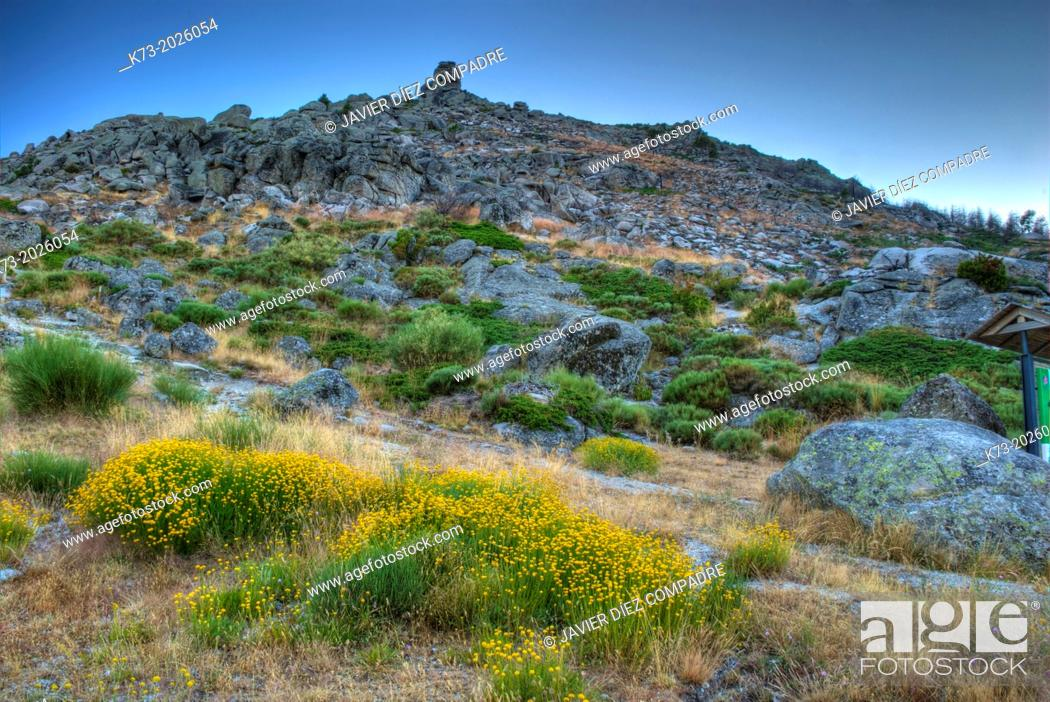 Stock Photo: Mountain. Sierra de Gredos Regional Park. Avila Province. Castilla y Leon. Spain.