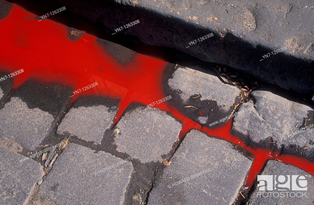 Stock Photo: Blood flowing in the gutter.