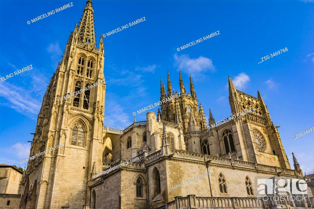 Stock Photo: The Cathedral of Saint Mary of Burgos. South side, from the Plaza de San Fernando. Burgos, Castile and Leon, Spain, Europe.