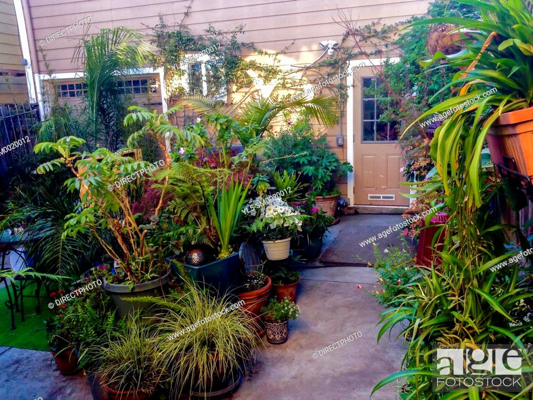Stock Photo: San Francisco, CA, USA, Private Garden in Air BNB Townhouse Tourist Rental.