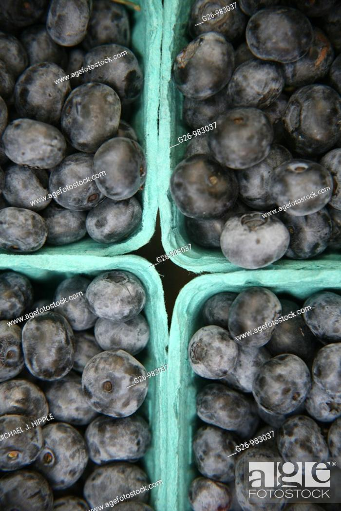 Stock Photo: Baskets of blueberries.