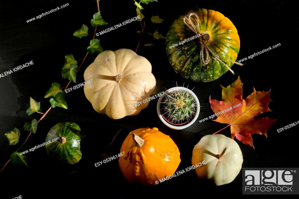 Stock Photo: Autumn decoration with leaves and Colorful Pumpkins.