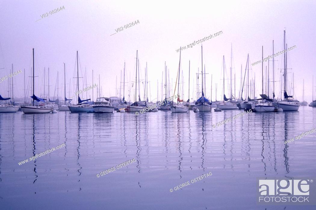 Stock Photo: CA638N Harbor Island area marina, San Diego, CA.
