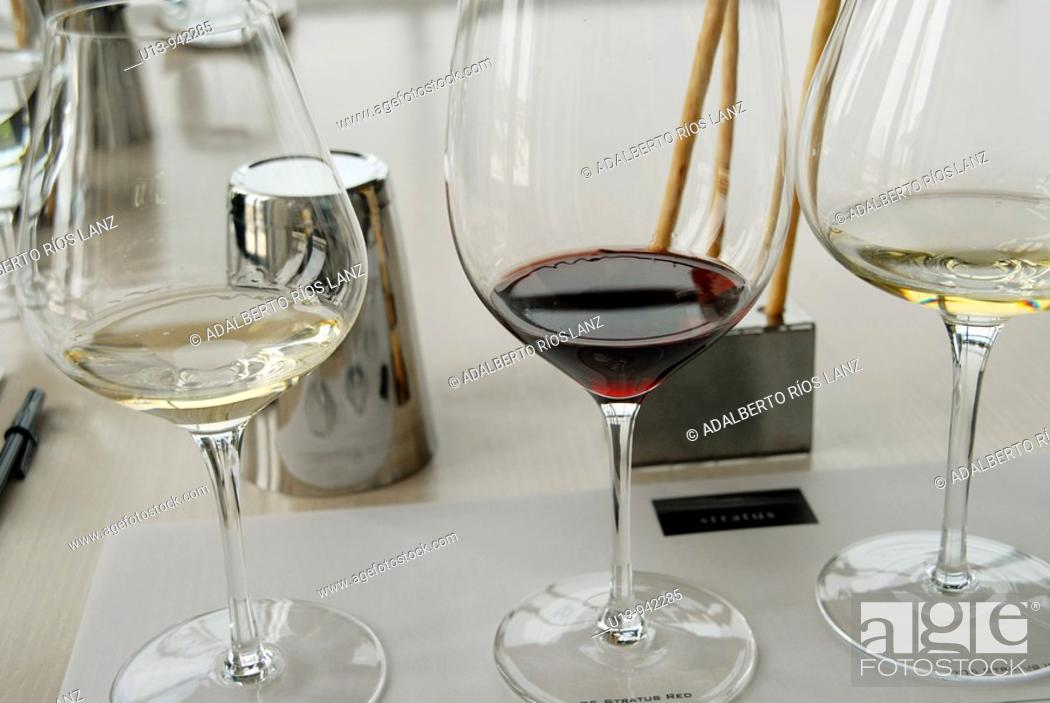 Stock Photo: Wine tasting, Niagara, Ontario, Canada.