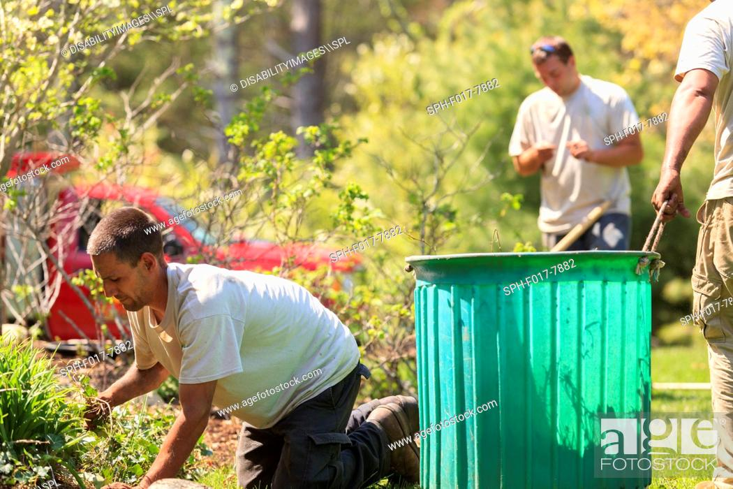 Stock Photo: Landscapers clearing weeds from a garden into a bin.