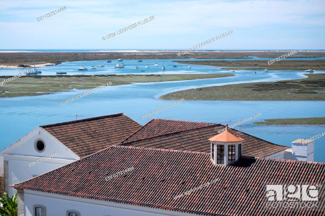 Stock Photo: the view to the Ria Formosa Landscape in the city centre at the Lago de Se in the old town of Faro at the east Algarve in the south of Portugal in Europe.
