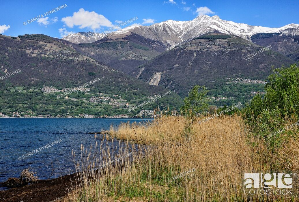 Stock Photo: Northern end of Lake Como, Colico, province Lecco, Lombardy, Italy.