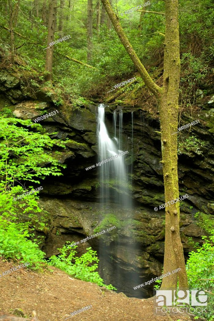 Stock Photo: Waterfall, Spring, Whiteoak Sink, Great Smoky Mountains National Park, TN, USA.