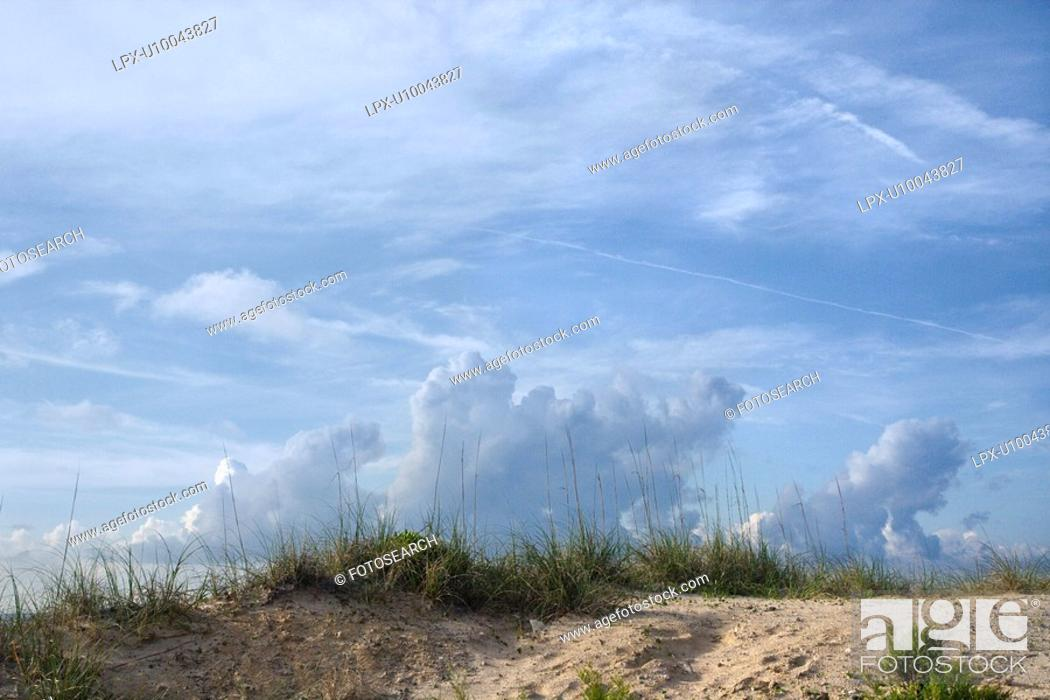 Stock Photo: Sand dune with beach grass and cloudy sky.