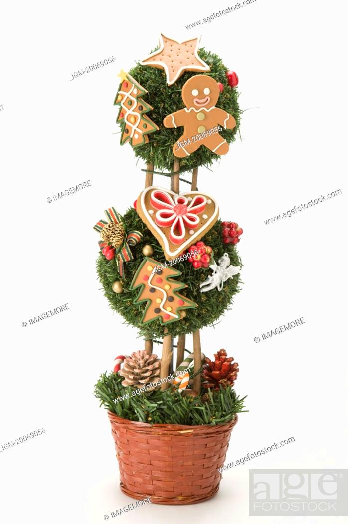 Stock Photo: Christmas Tree in a flowerpot.