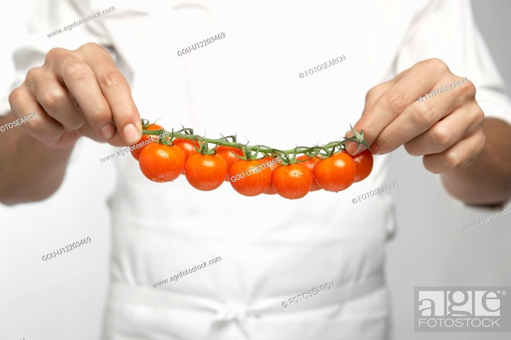Stock Photo: Chef holding tomatoes on vine (mid section).