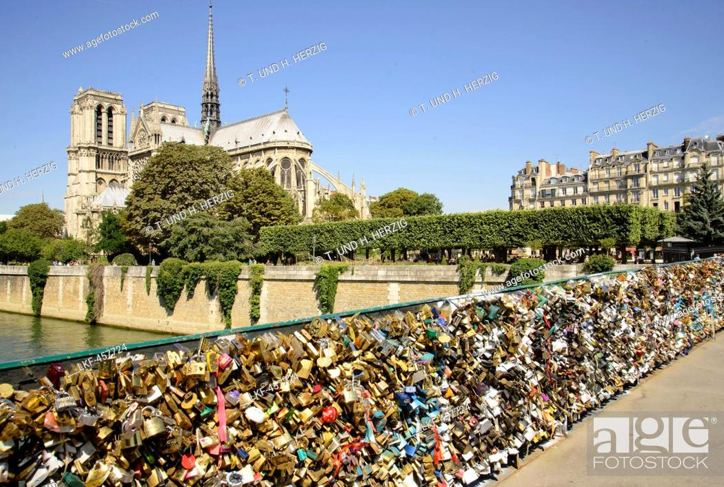 Stock Photo: Love padlocks on bridge Pont de L'Archeveche in front of cathedral Notre Dame, Paris, France, Europe.