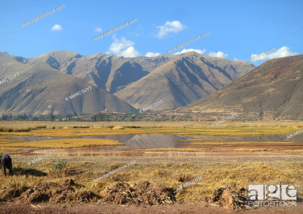 Photo de stock: Agricultural fields around Huacarpay lake in the high Andes near Cusco in Peru.