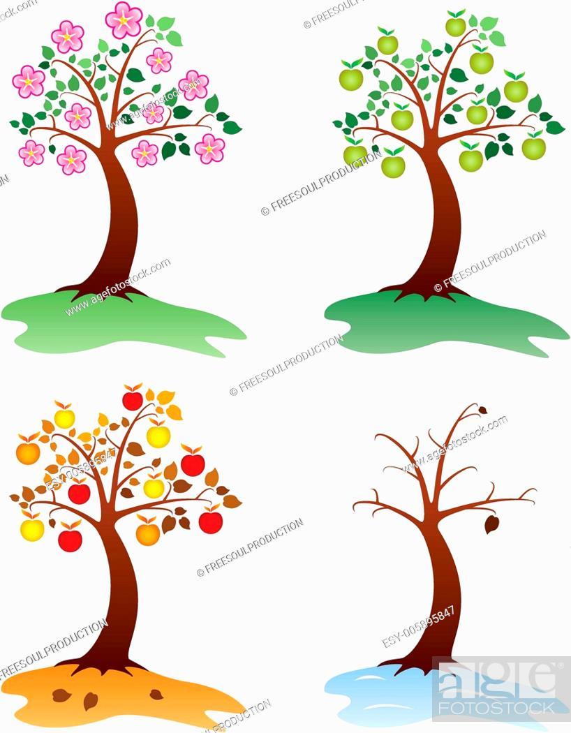 Stock Vector: vector apple trees.