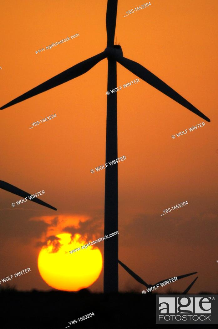 Stock Photo: Windfarm, La Muela, Zaragoza province, Spain.