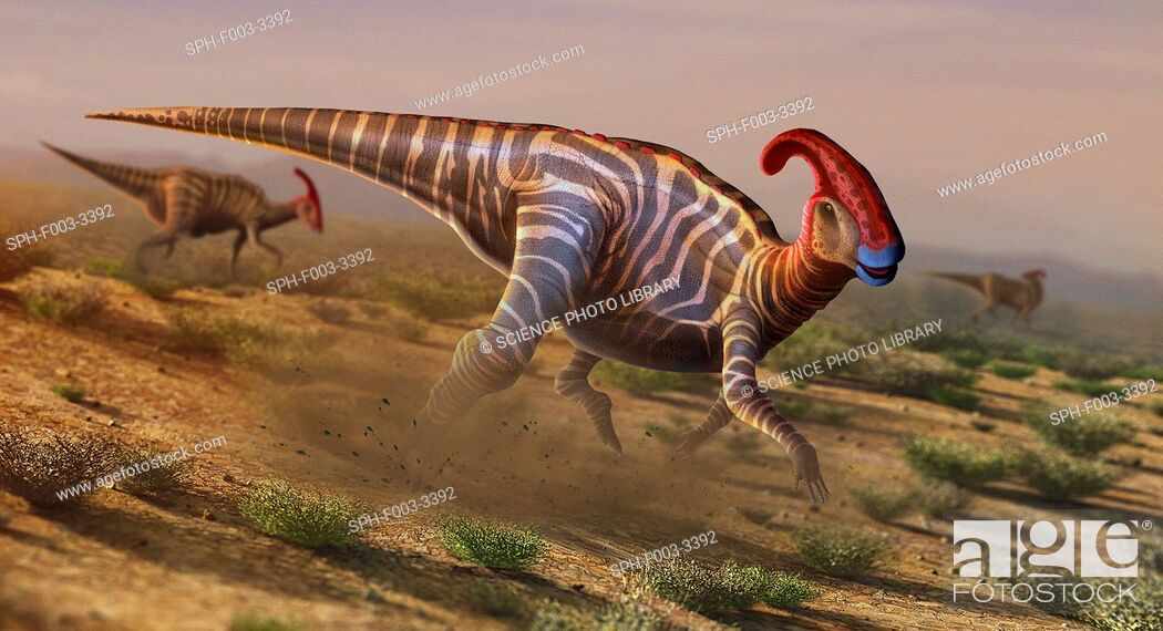Stock Photo: Artwork of parasaurolophus.