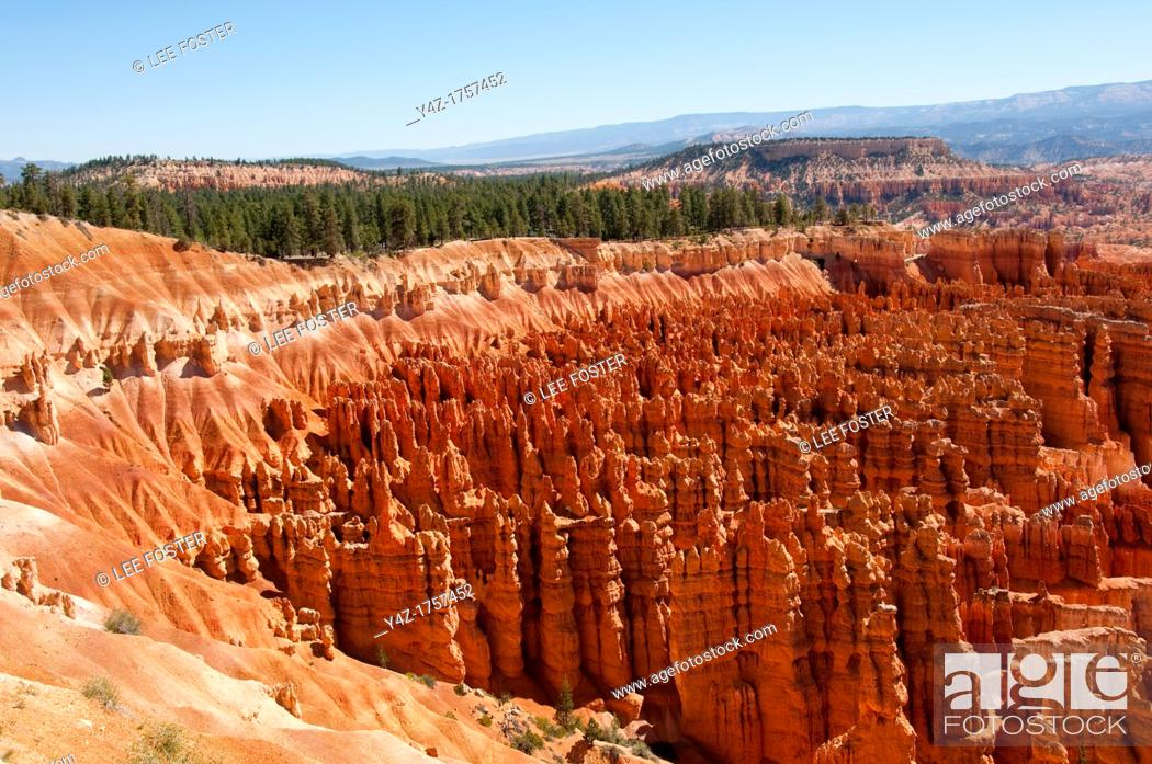Stock Photo: USA, Utah, morning light on landscape at Sunrise Point in Bryce Canyon National Park.