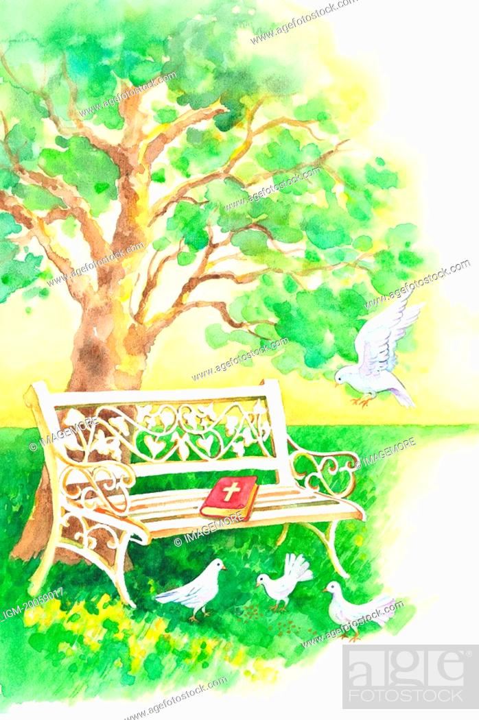 Stock Photo: Animal, Watercolor painting of doves perching on the lawn with bible and bench.